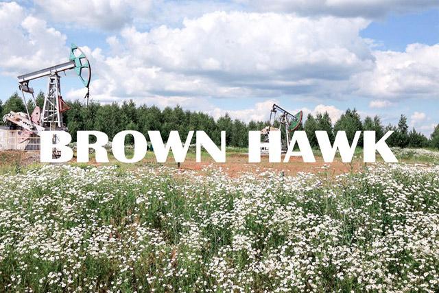 Brown Hawk Joins the Austin Technology Incubator