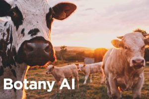 Botany AI creates animal protein without the animal.